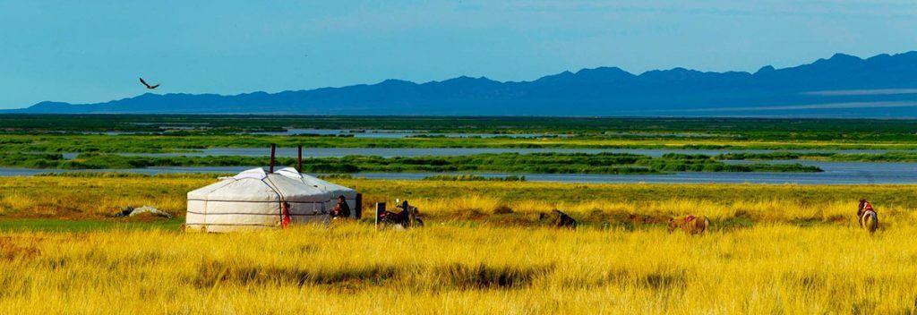 trek-cheval-mongolie