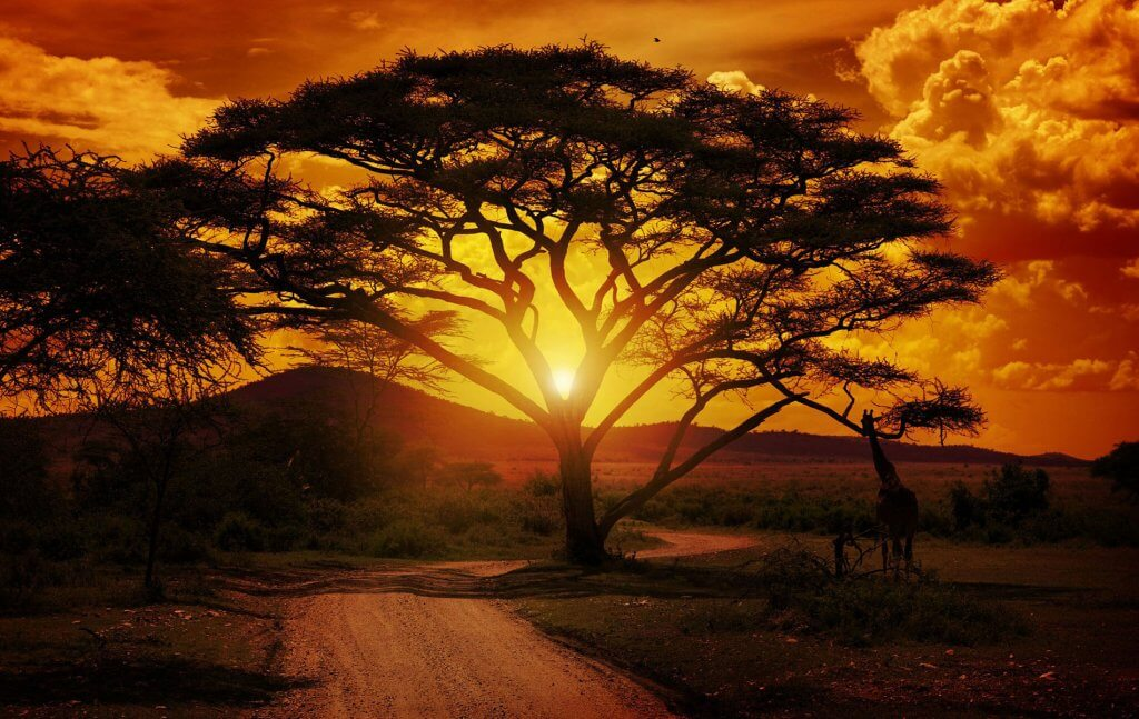 afrique-du-sud-coucher-soleil