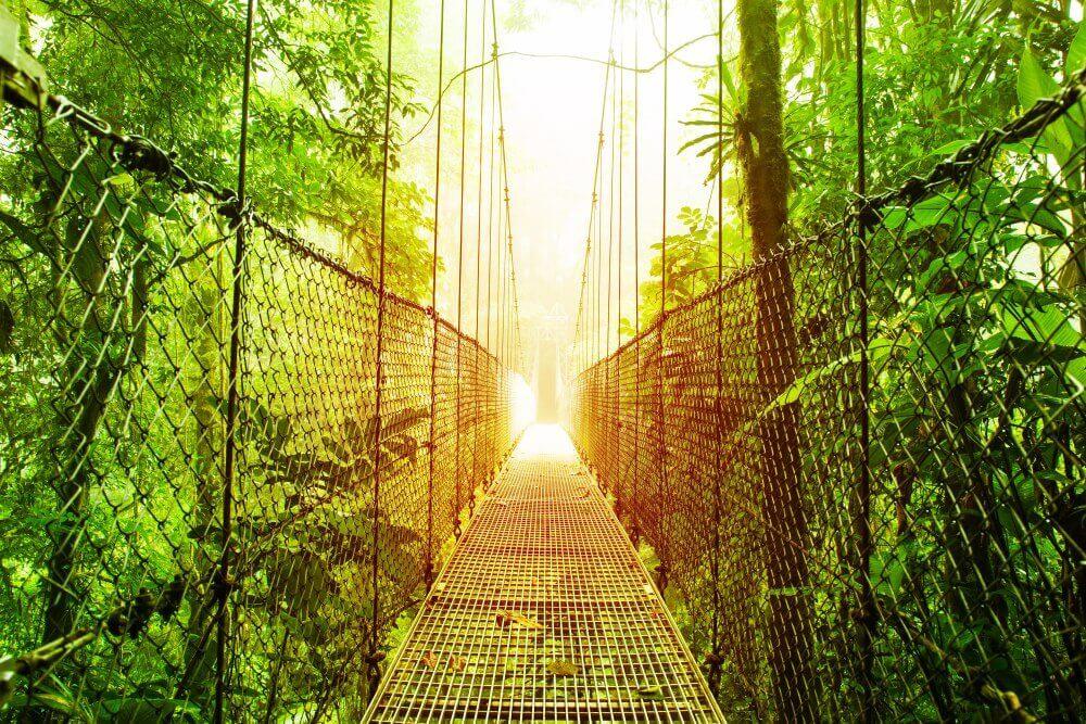 pont-costa-rica