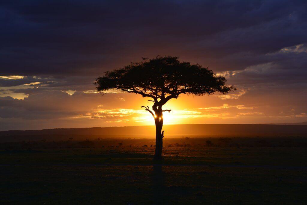 visiter le kenya