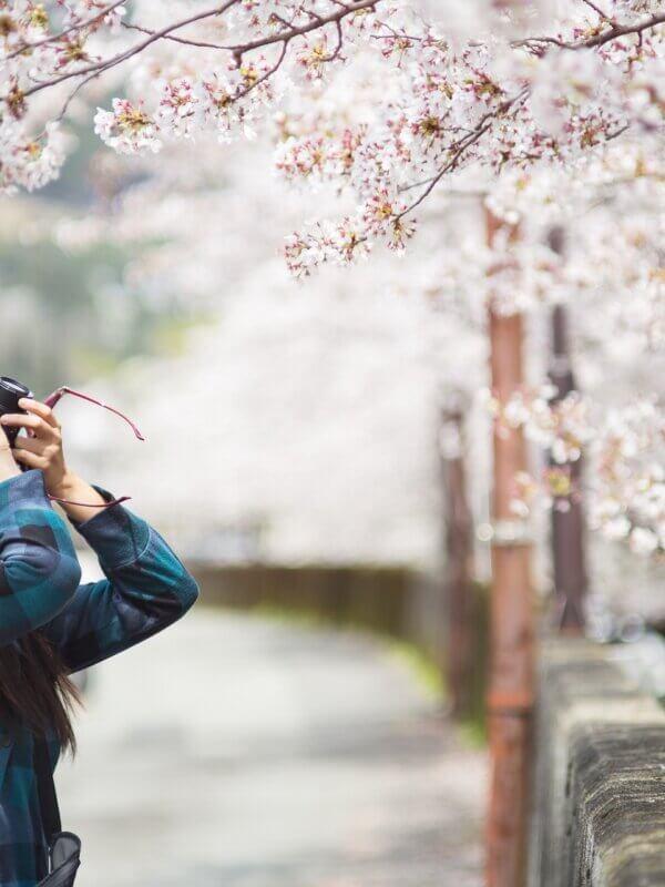 les essentiels pour un voyage japon